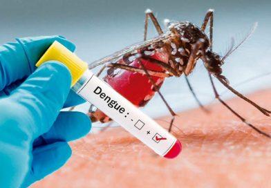 Vecinos de la colonia Los Sauces piden más brigadas contra dengue