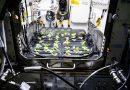 Cultivar rábanos en el espacio, la nueva misión de la NASA